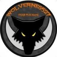 Wolverines527